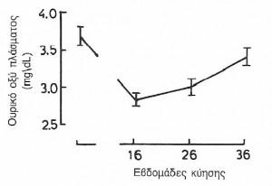 Φυσιολογικές μεταβολές του ουροποιητικού2